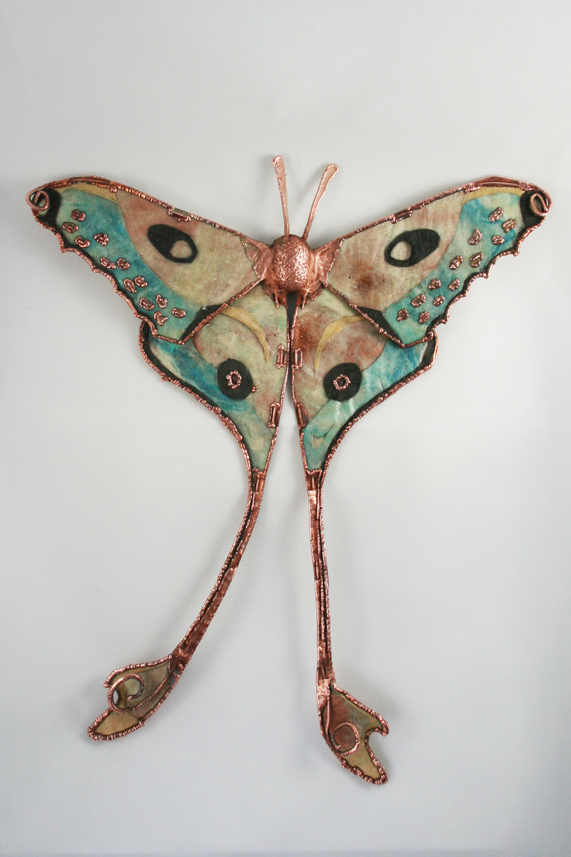 Comet Moth, Silk Moth Series by CopperMoth