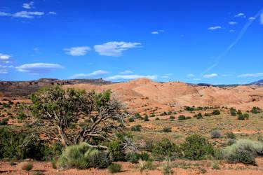 Moab the Moon on Earth by valkyrjan