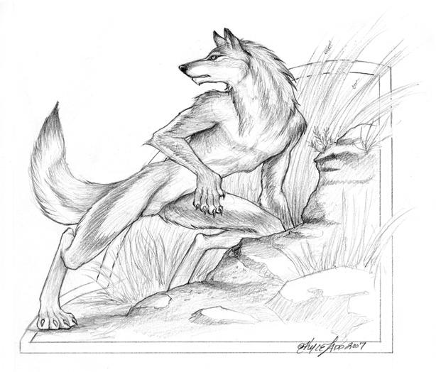 ZOMG furry by KyleLadd