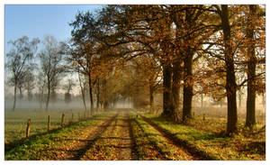 November Myst VIII by SubArcticSheep
