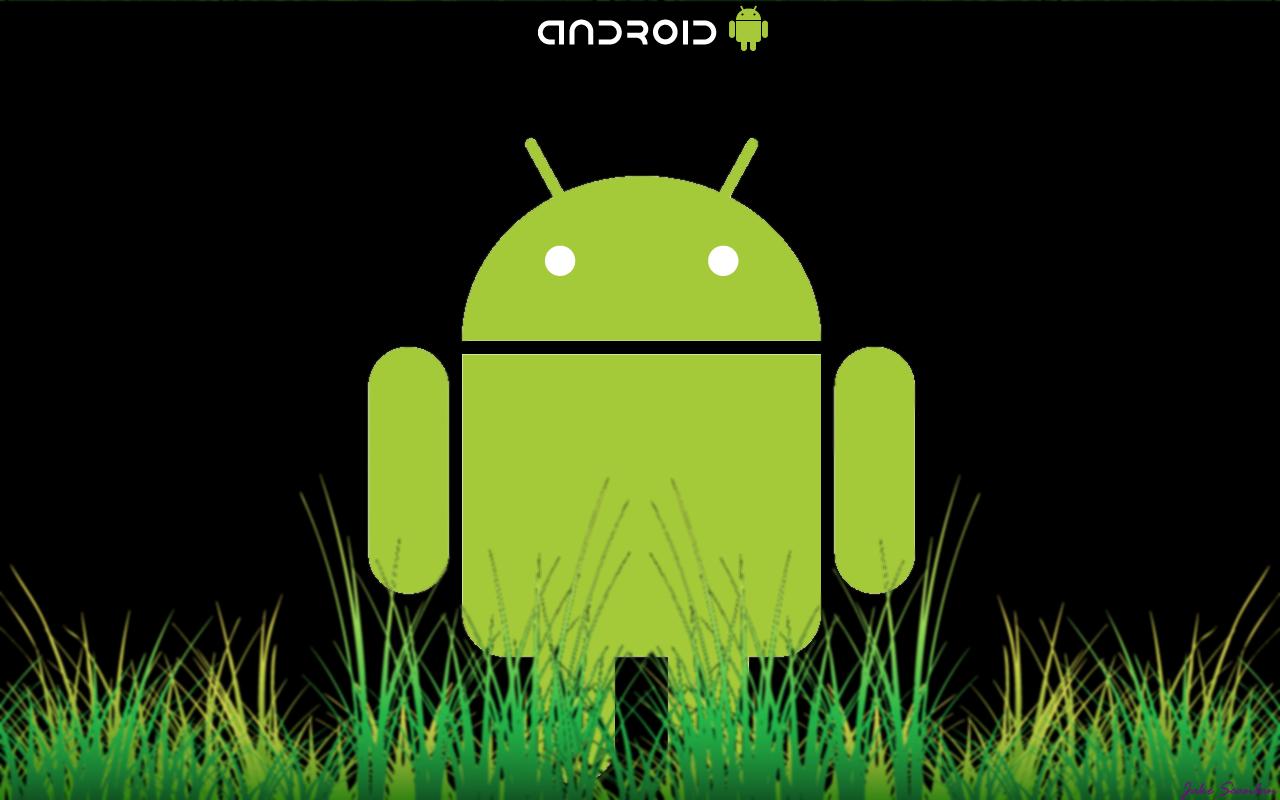 http://fc01.deviantart.net/fs71/f/2010/273/e/3/google_android_wallpaper_by_jakeyboyzang-d2zsqds.png