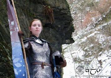 Elrian: Elven shield maiden by Anylon