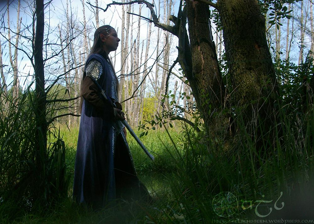 Elven shield maiden by Anylon