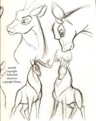 Sketchbook-Disney Deer v4 by Ashwin24