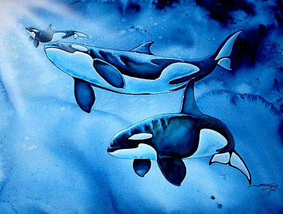 Orca Family by Ashwin24