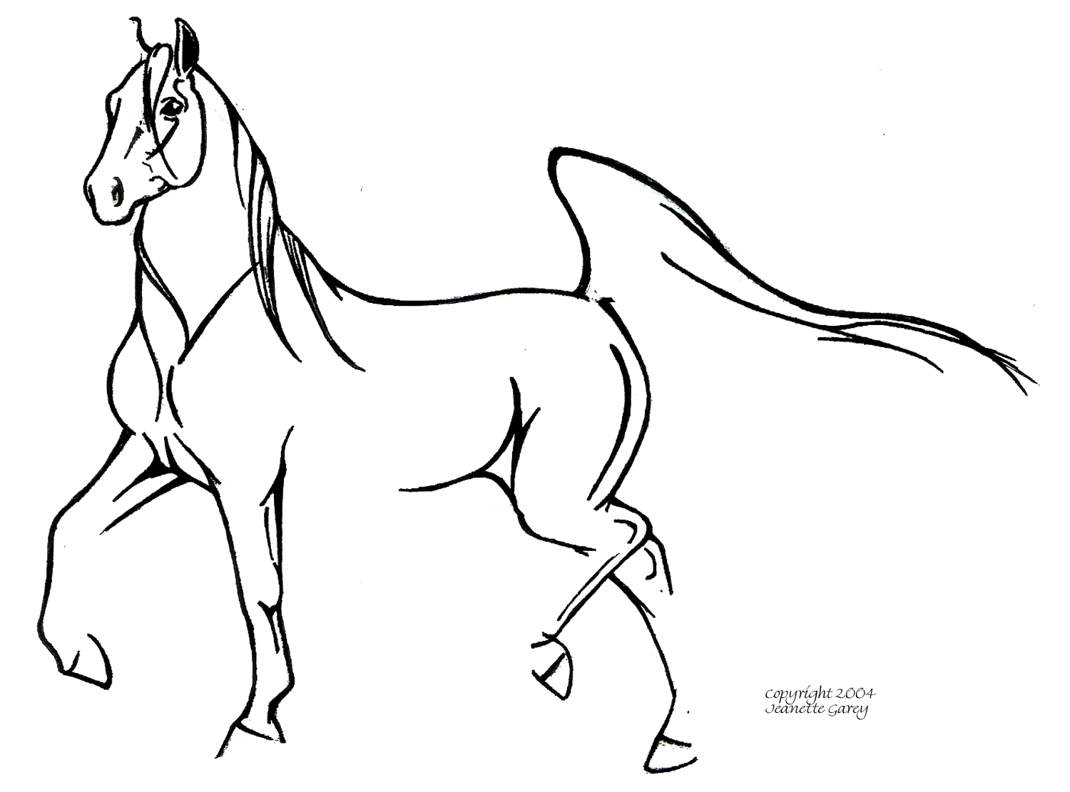 Easy Line Drawings Of Animals : Arabian horse line drawing