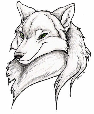 Wolfess Portrait by Ashwin24
