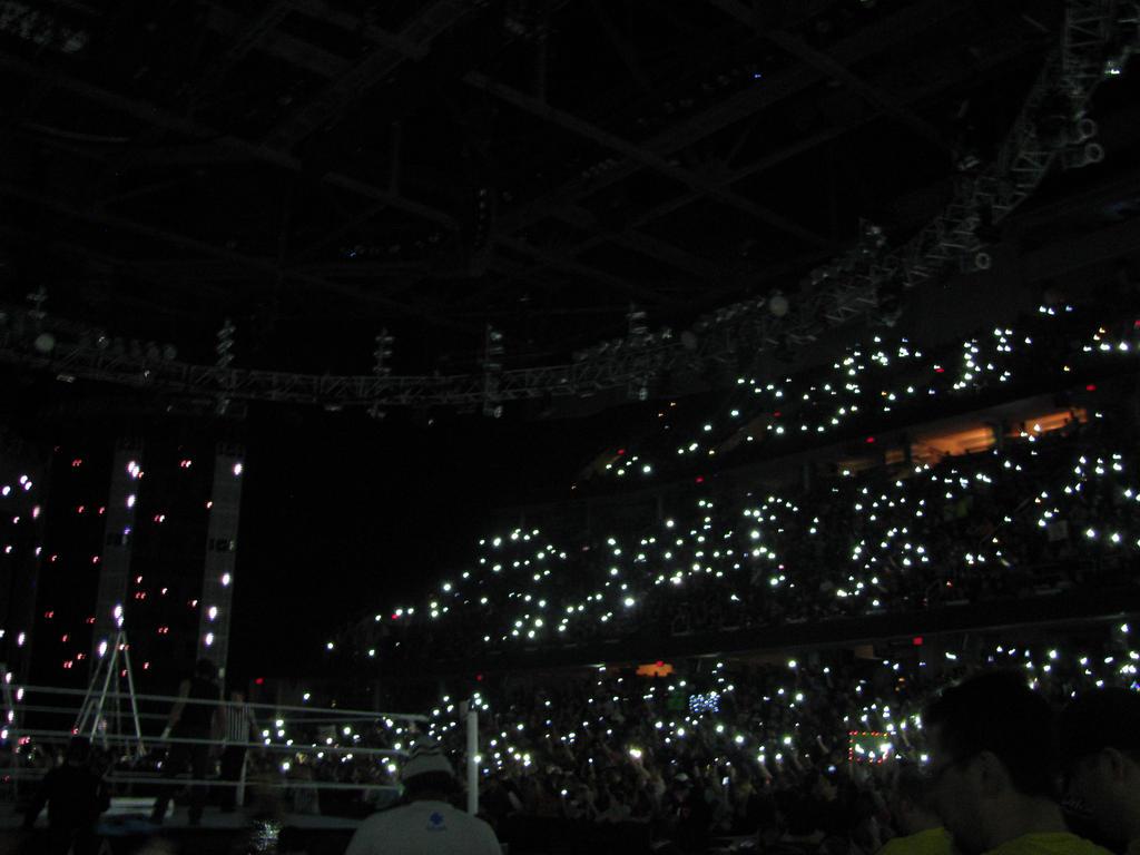 Follow the Fireflies by ShadowWolfZ