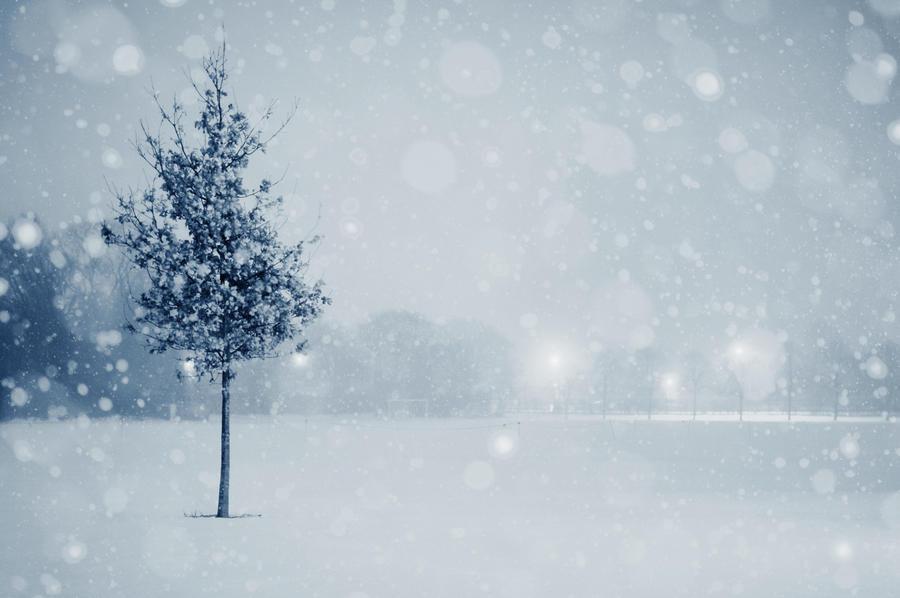 Snow Globe by rh89
