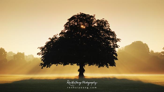 Far Away by rh89