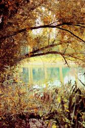 Chrome lake