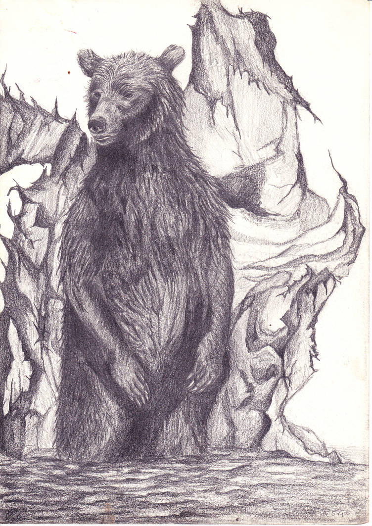 Bear by JetteReitsma