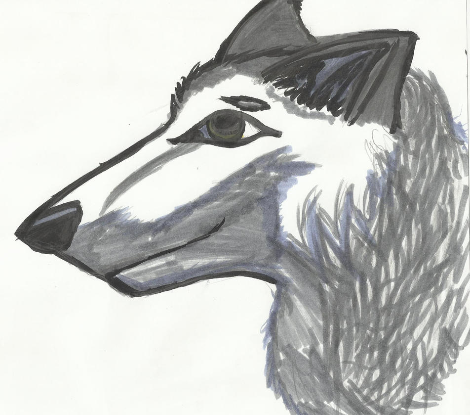 Lone Wolf by Glamrgrl104