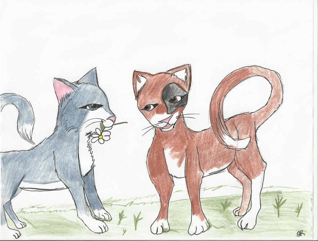 Cats by Glamrgrl104