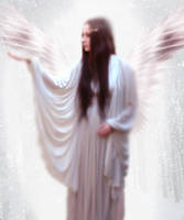 Snow Angel by Perhin