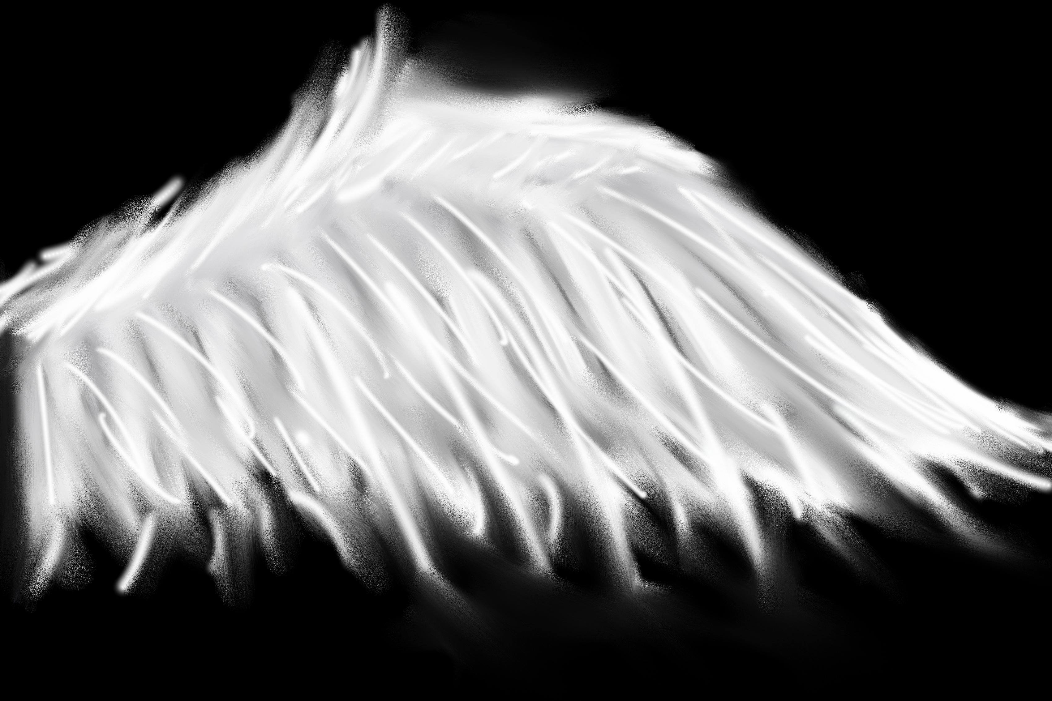 pandora aile ange