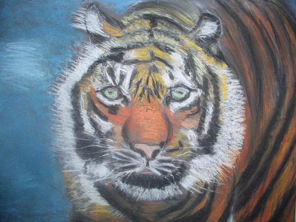 Tigre au Pastel v881 by lv888