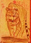 Tiger Passion V881