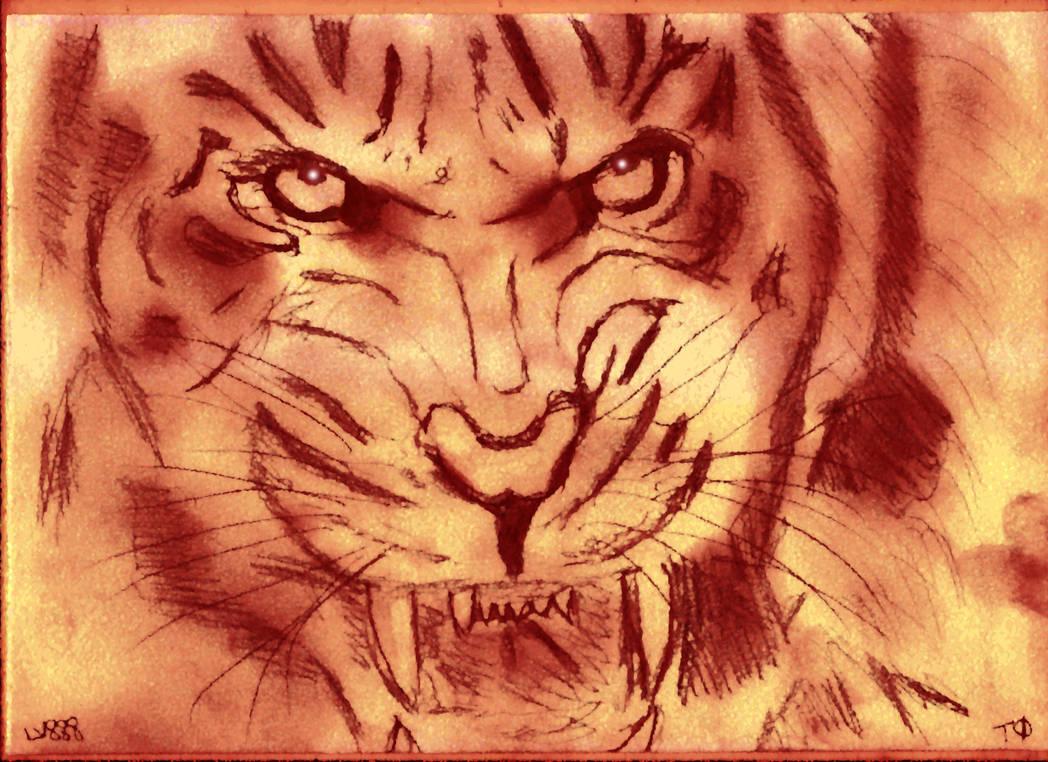 Tiger Passion v882