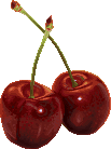 Pixel Cherries by Cyangmou