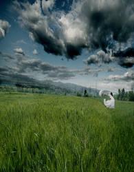 Feel the wind by danigranger