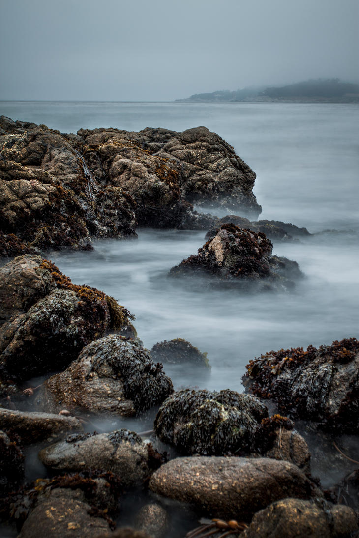 Coastal Fog by Non-PhotoBlue