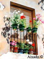 balcon by aixado