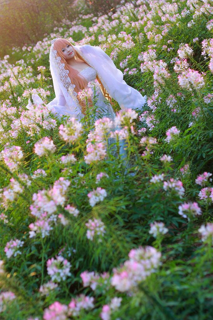 Sheryl Nome bride ver by Tominaga-Sei