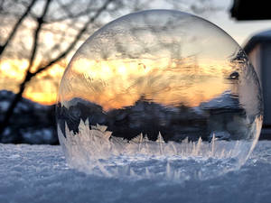 Sunset Enchanted bubble