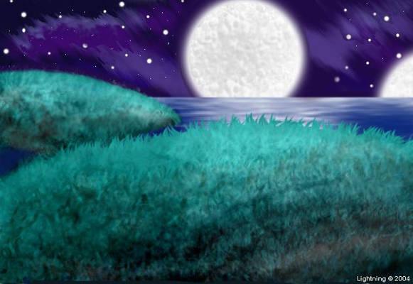 Midnight on the grassy beach