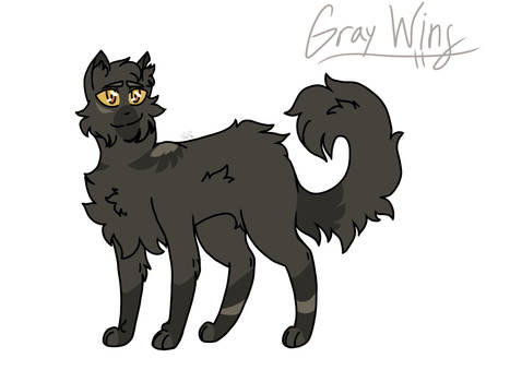 WC a Day: #1 Gray Wing