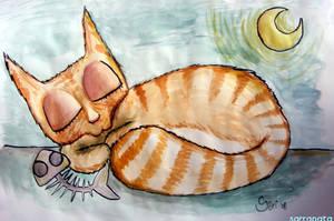 gatito durmiente.