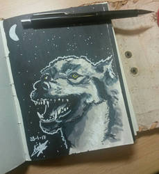 Wolf sketch by Cheapknight