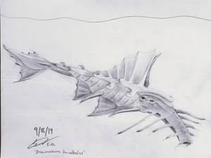 Proximastoma hannibalus: The War Elephant Proxfish