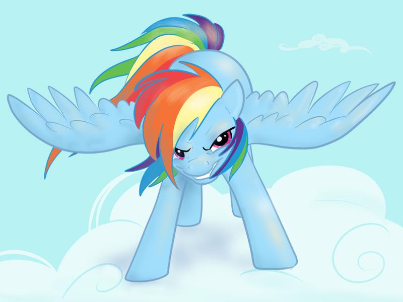 Rainbow Dash : Wanna Race?! by northernlightsmlp