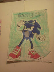 Sonic The Hedhog