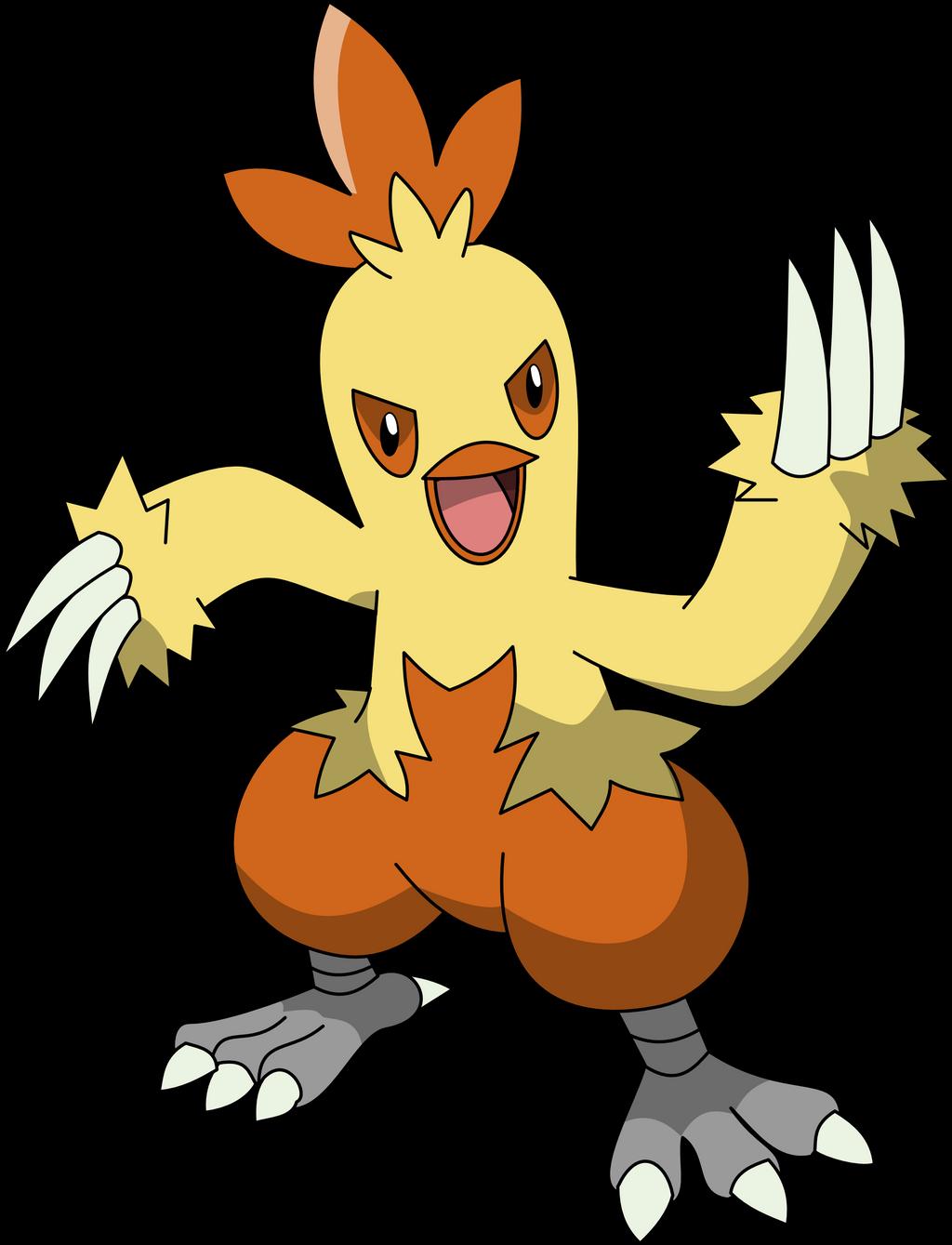 Combusken (Pokemon) : mildlypenis