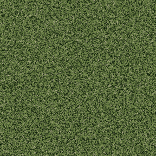 3d Grass Texture with Seamless Tiling