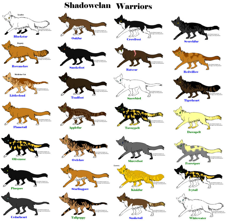 Warriors Dawn Of The Clans Characters: Shadowclan Warriors By Willowclaw101030 On DeviantArt