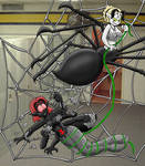 Dryder and Spider