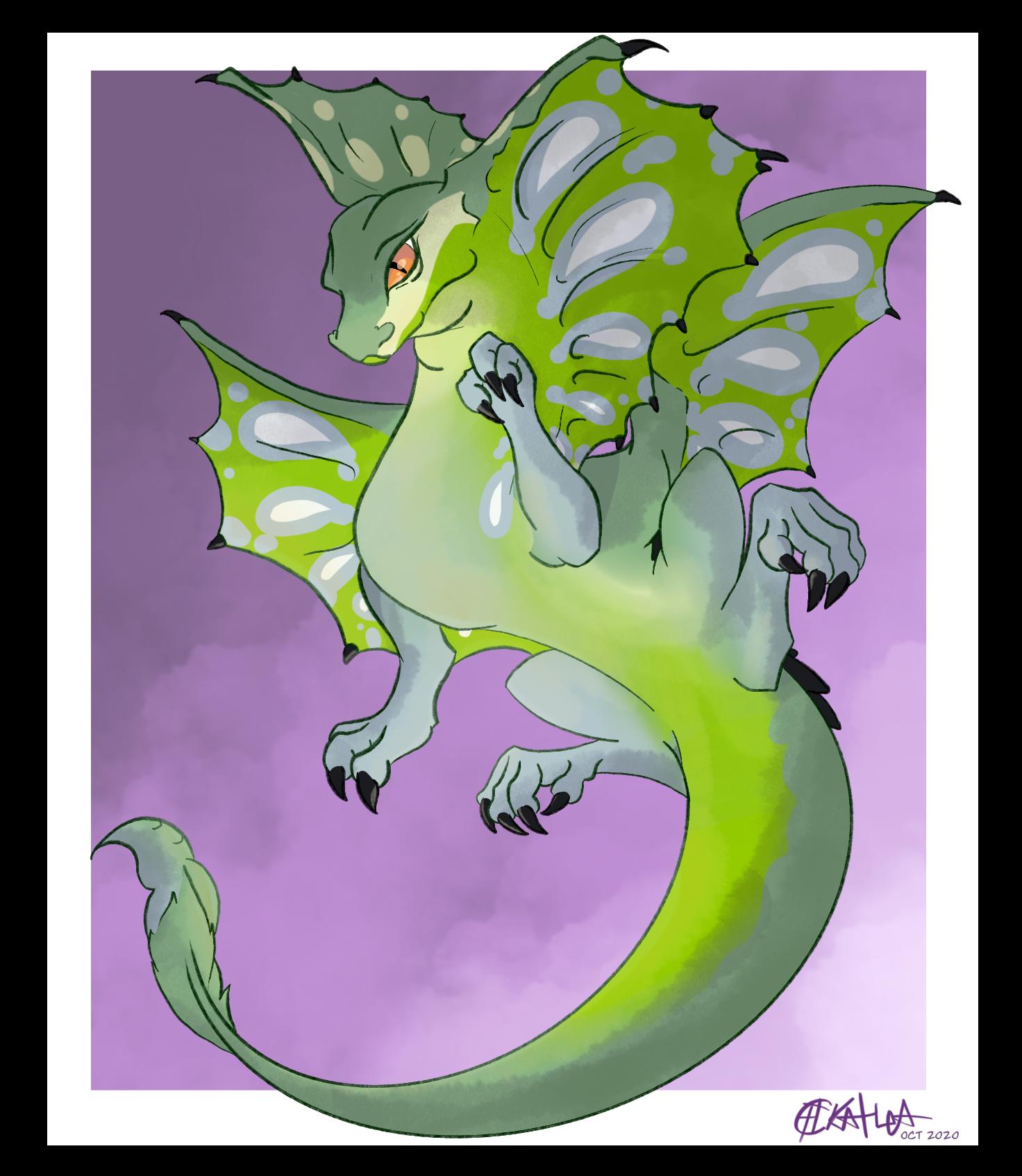 Lizard snake dragon boyo
