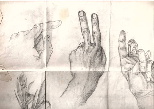 Hand and Finger Poses