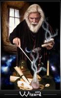 Wizard II by RoxRio