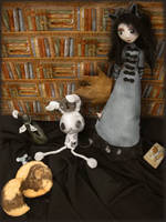 Alice in my library by SoLbizaRk
