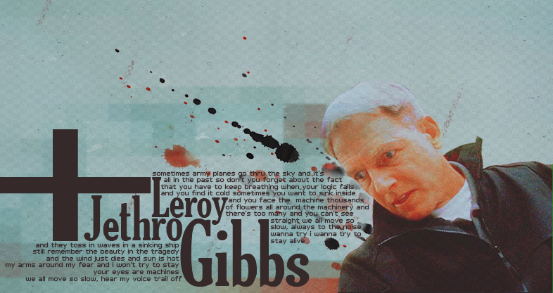 Leroy Jethro Gibbs by FayexFaye