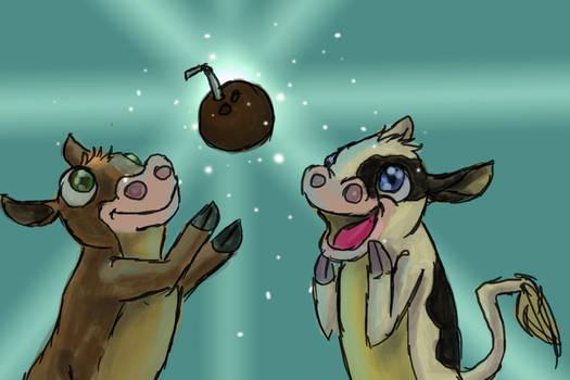 Coconut Crazy Cows