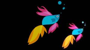 Fish Windows 8.1 Boot