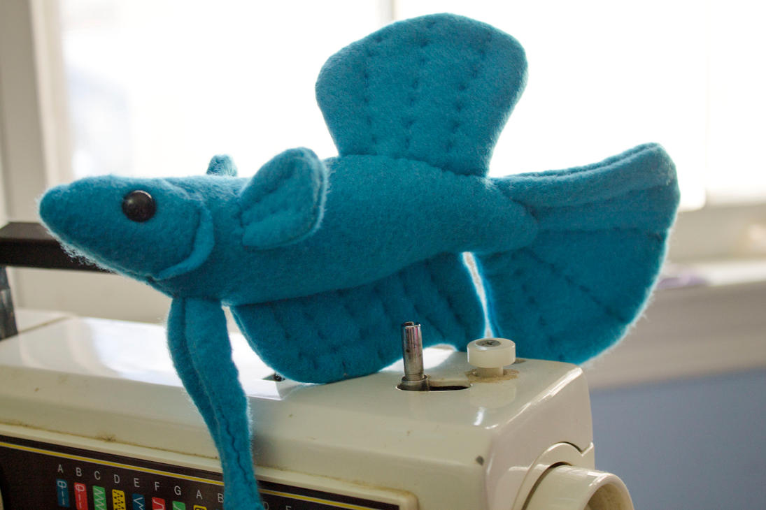 Blue betta fish plush by beezee art on deviantart for Toys for betta fish