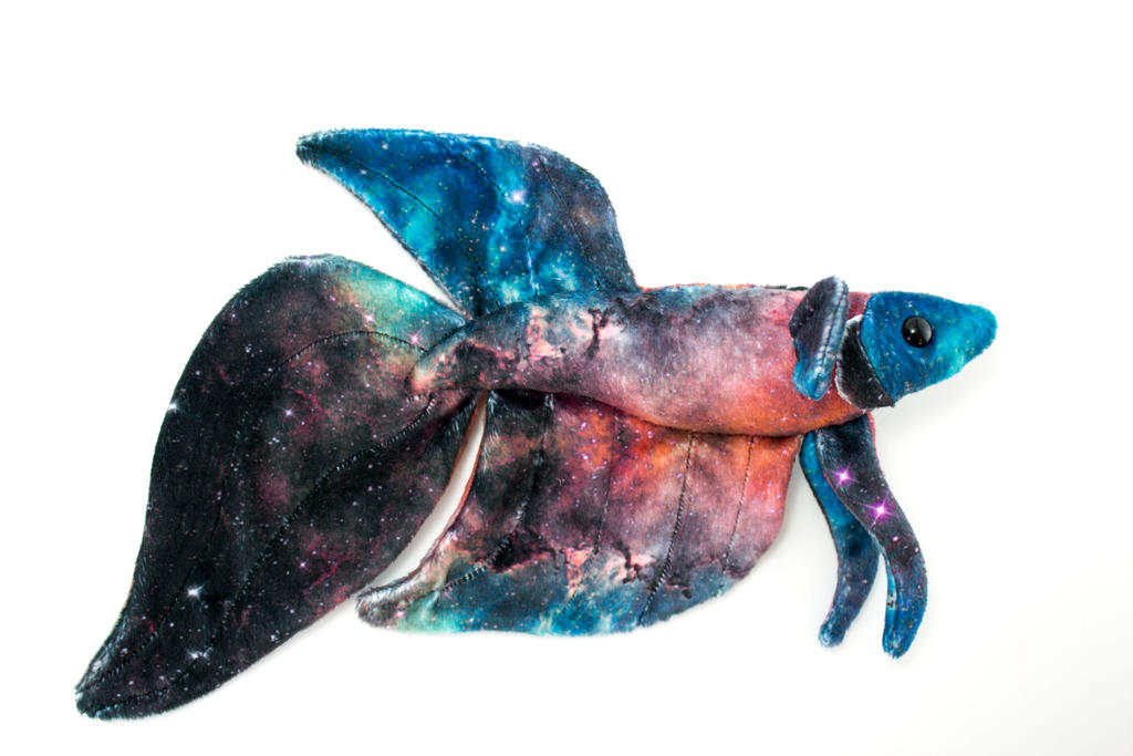 Galaxy Betta 3 by BeeZee-Art