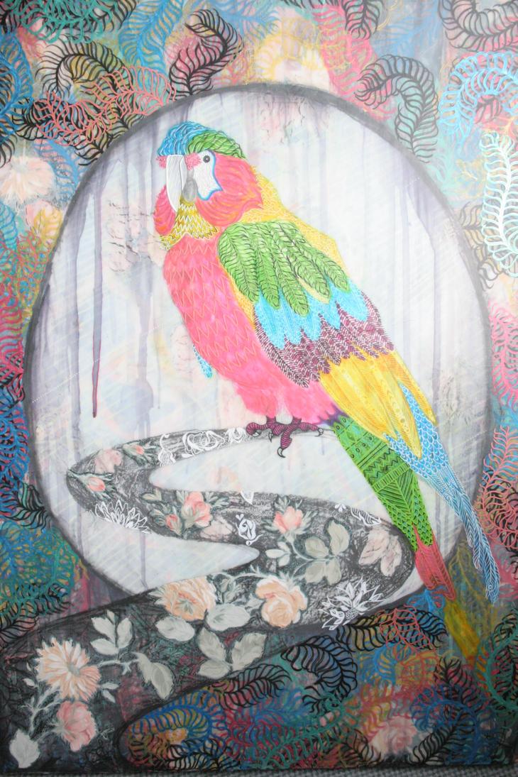Birds Eye by Jojomoko